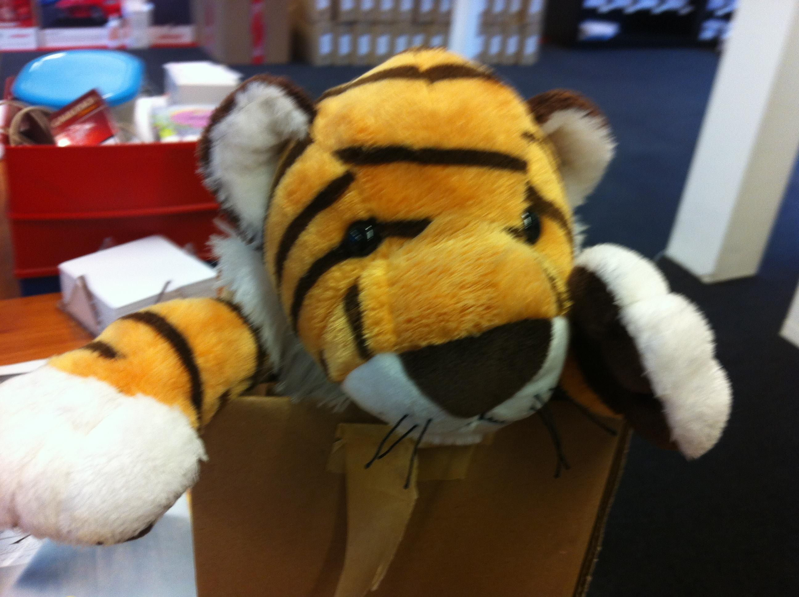 Mimaki pertama tiger