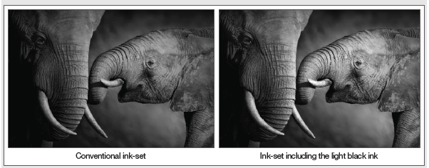 Exemplo de light-black-ink-na mimaki jv150
